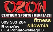 OZON - siłownia i fitness - Brzozów, Poniatowskiego 3