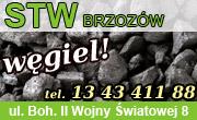 Węgiel - STW Brzozów